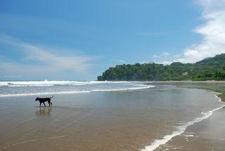 Jessie on a beach in Costa Rica