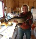 The cook catches a Trout