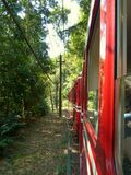 Tram to Corcovado