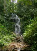Irene Falls