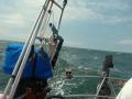 Buzzard Bay and rough conditions