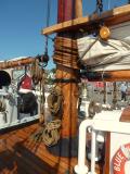 Masts of Douglas Fir