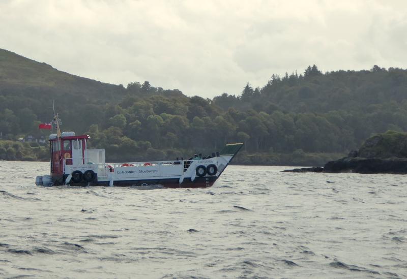 Carvoria - A wee ferry