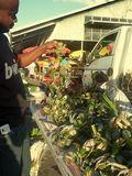 Bouquet of crabs