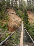 Amazing suspension bridge and ladders