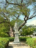 Simon Bolivar and ancient tree