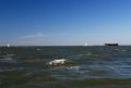 Sailing north at 7 knots