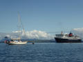 Curare and the Isle of Mull ferry