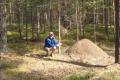 Giant anthill