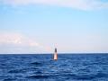 Buoy 15