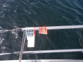 Boat tags showing you paid