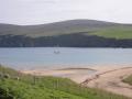 Curare in Burra Firth Shetland Islands