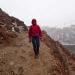 LB Trekking in a snow fall