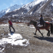 LE Local Langtang transport