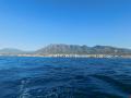 Typical coastal scenery