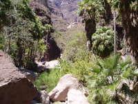 Steinbeck_canyon