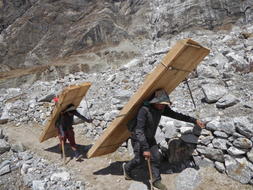 MD Porters carrying lumber