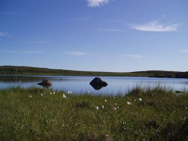 Artsy Arctic Scenery